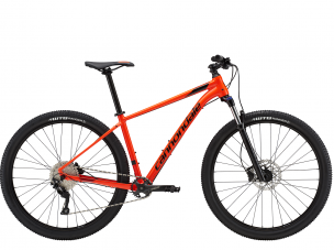 2019 Cannondale Trail 5 ARD 29M